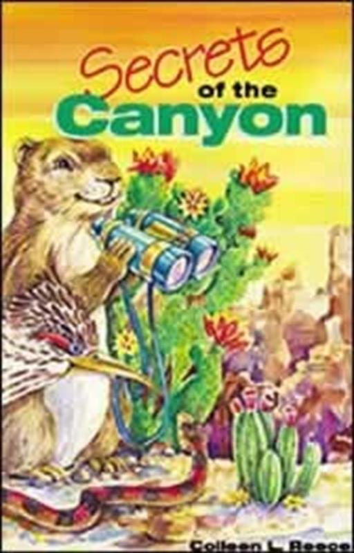 SECRETS OF THE CANYON,CHILDREN'S MINISTRY
