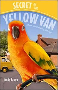 SECRET OF THE YELLOW VAN,BARGAIN,0816322465