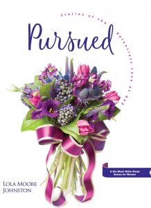 PURSUED WORKBOOK NAD WMBY19,NEW BOOK,9780816364237