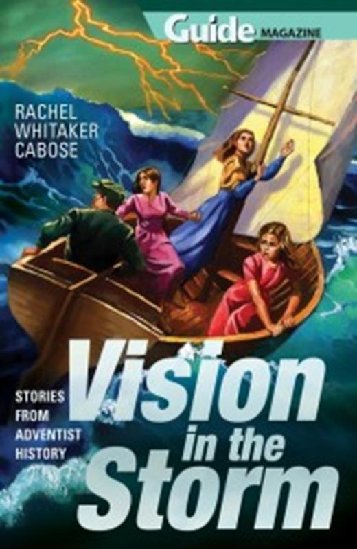 VISION IN THE STORM,NEW BOOK,9780816364213